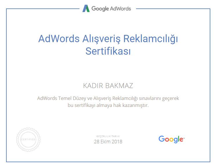 adwords alışveriş reklamları sertifikası
